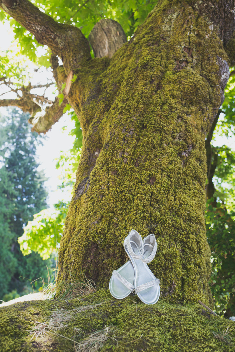 shoes against tree for a creative wedding shot